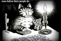 Tarot Humor & Tarot Memes / Funny pins, pictures and comics, memes about tarot.