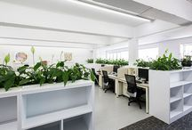 Moving Organisation To A Greener Future / Melbourne Plant Hire Services