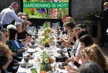 """Bakker's vergeten groenten en eetbare bloemen lunch / 13 en 14 april 2015 organiseerde Bakker een prachtige lunch voor 40 internationale journalisten. Zij konden genieten van een """"sharing lunch"""" met vergeten groenten en eetbare bloemen. Gerechtjes die jij ook uit eigen moestuin kunt maken!"""