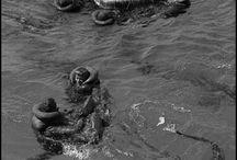 Oolog / Foto's van verschillende oorlogen