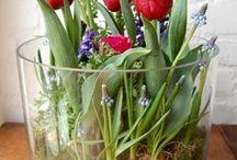 Blumen/gesteck