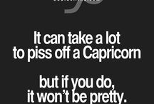 Capricorn / Zodiac