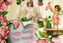 Happy Sunday ❤️