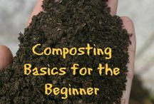 A Green Thumb / Ideas for gardening and landscaping your home.