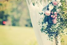 {WEDDINGS - Backdrops} / Ceremony Backdrops