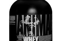 Whey Protein Supplements
