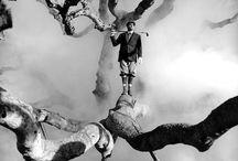 monochrome / black and white photos