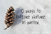 Explore Nature in Winter