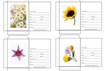 Seed Packet Templates / by Guerilla Gardener