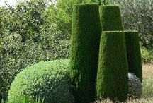 In EEDEN:topiary / This one is closely related to #greenfurniture.  This is a very old concept with a few new uses.