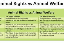 A.L.F. ANIMAL RIGHTS  ANIMAL WELFARE