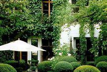Gardens & patio