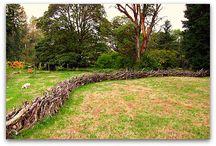 Stick Fences