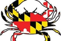 Wonderful Maryland / by Carol Myer