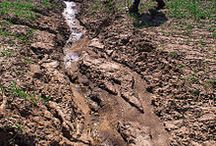 Soils, erosion and deposition