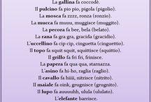 Italiano Didattica