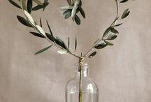 Olive tree wedding