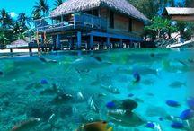 Quero visitar / Lugares exóticos para apreciar a beleza natural