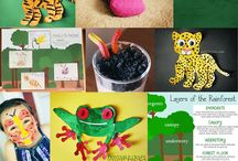 ECE Summer Camp Themes / by Jackie Moore