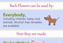 Bach flower remedies / Bach flower remedies