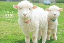 MAKIBA: Cute Farm Animals (たのしいまきば) / Smiling Sheep, sleeping goats, laughing pigs, kissing horses, jumping rabbits…, various 'fluffy' farm animals are appeared in this book. They won ladies' heart with their lovely behaviors in beautiful landscapes.