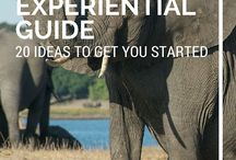 Africa Travel Guide / 0