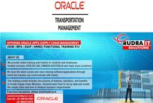 Oracle Apps OTM online Training /  Oracle Apps OTM online Training in Hyderabad,USA, UK, Australia, New Zealand, UAE, Saudi Arabia, India, Pakistan, Singapore, Kuwait   http://www.training.rudraitsolutions.com/oracle-transportation-management.html  http://rudraitsolutions.blogspot.in/2014/09/oracle-apps-otm-training.html  about course details Mail me:rudraitsol@gmail.com