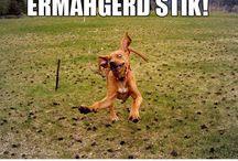 Ermahgerd!!!!  Sorry, I had to  lol