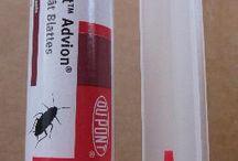 Produits contre les cafards (blattes)