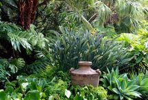 Angoli di un giardino