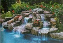 My backyard plans...