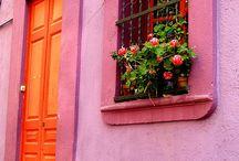 Orange Pink / by Gwen Plauche