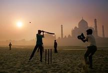 Cricket ...!