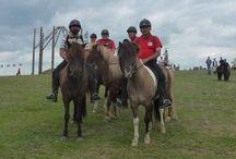 Icelandic horses in Transylvania / http://www.izlandilovak.ro