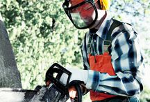 Workplace Safety / General safety for the workplace