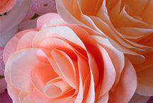 Flower Crafts / by Susanna Delon