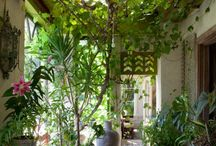 courtyards / by Linda Hurst