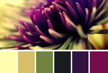 colorfullness