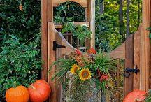 Garden design ideas / Inspiration for garden design