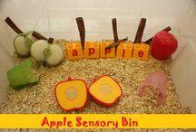 Early Learning: Sensory Bins / by Insta <3