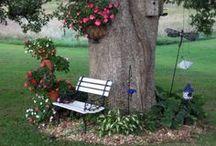 Backyard Tree-scape