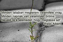 Quot/eM