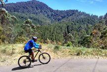 uphill by bike / Palintang mountain