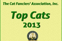 CFA Top Cats 2012-2013 / CFA presents its Top cats in Championship, Kitten and Premiership for the 2012-2013 season! Congratulations to all of our Winners!  / by Cat Fanciers Association
