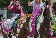Festivals and Parades / festivals and parades from all over the world