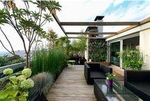 taras ogród