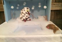 Jt snowy owl project