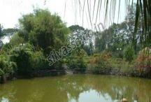 Resorts in Silvassa / #Silvassa #Resorts www.resortsinsilvassa.com