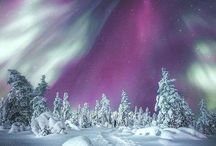 Northern Lights/Aurora Boreal
