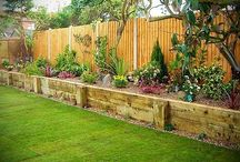 Gardens/ Backyard